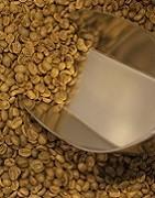 Rohkaffee für Heimröster ✔️ große Auswahl an Arabica